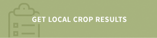 Get local crop results